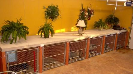 Small Dog Run - Kennel Rates
